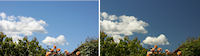 With and without polarizing filter